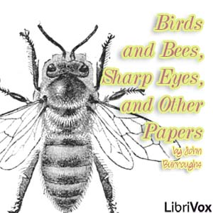File:Birds and bees sharp eyes and other papers 1405.jpg